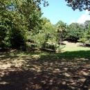 Парк Южные культуры — природная достопримечательность Адлера.