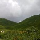 Альпийские луга в Абхазии.