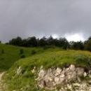 Высокогорные луга Абхазии.
