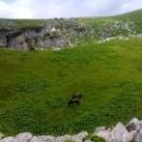 Эко-туризм в Абхазии, поездка на альпийские луга в горы Кавказа.