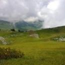 Необъятные зеленые долины в горах Абхазии.