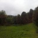 Эко-туризм в Абхазии.