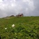 Природное достояние Абхазии – высокогорные луга.