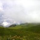 Альпийские луга Абхазии на высоте более чем 2000 м над уровнем моря.