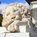 Воронцовский дворец Спящий лев