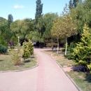 Парковые аллеи в Архипо-Осиповке.