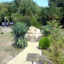 Аллеи парка на курорте Архипо-Осиповка.