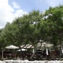 Рестораны на пляже Жаница в Черногории.