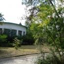 Гранат в доме отдыха Псоу. Поселок Цандрипш.