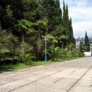 Вход на территорию дома отдыха «Псоу» Цандрипш Абхазия.