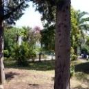 Вид на летние корпуса дома отдыха Псоу Цандрипш.