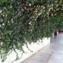 Холл дома отдыха Псоу Цандрипш Абхазия.