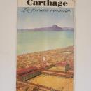 Карфаген в Тунисе.