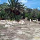 На территории участков древнего города Карфагена. Тунис.