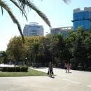 Парк в центре Сочи.