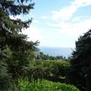 Вид на Черное море со смотровой площадки пансионата Солнечный.