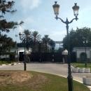 У президентского дворца в Тунисе.