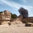 Раскопки древнего Карфагена в Тунисе.