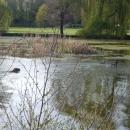 Отдых в парках Праги. Чехия.