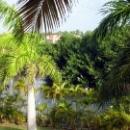 Природа Доминиканской республики.