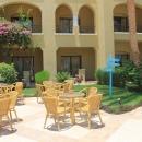 Ухоженные зеленые газоны и цветы на территории отеля в Египте.