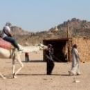 Прогулка на верблюде по пустыне.