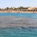 Макади-Бей, рифы, пляж.