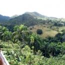Природа Доминиканы.