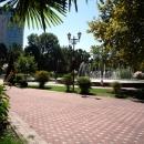 В парке у Фестивального в Сочи.