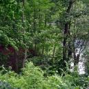 Капонир и оборонительный ров с водой на форте № 11.