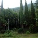 Природа Абхазии. Гудаута.