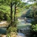 Плотина на реке у форелевого хозяйства. Абхазия.