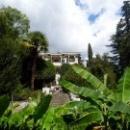 Гурзуфский парк основан в 1803 году, на 10 лет раньше Никитского ботанического сада..