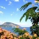 Природа Гурзуфа Крым
