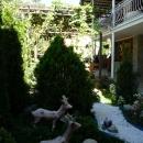 Ухоженные дворики на курорте Красная Поляна.