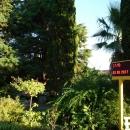 Парковая зона пансионата Эдем в Сочи.