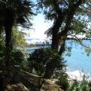 Вид из парка гостиницы «Жемчужина» на набережную Сочи.