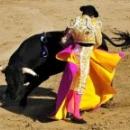 Испания - коррида
