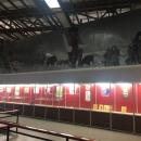 Экспозиция музея «Костёнки».
