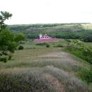 Мужской монастырь в Сафари-парке «Кудыкина гора»