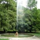 Старый парк в Гагре. Абхазия.