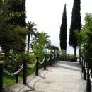 Парк у моря в Гагре. Абхазия.