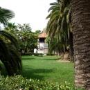 Ухоженные зеленые парки Гагры. Абхазия.