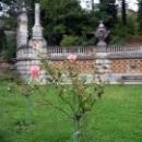 Розы украшают Массандровский парк.