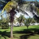 Курорт Канкун. Мексика.