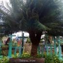 Кладбище парка Шкарет. Мексика.
