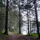 Прогулки вокруг Черного озера. Парк Дурмитор. Черногория.