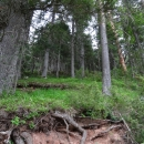 Национальный парк Дурмитор. Черное озеро. Черногория.