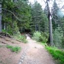 Пешеходные тропинки вдоль Черного Озера. Парк Дурмитор. Черногория.