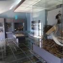 Экспонаты музея Скадарского озера.